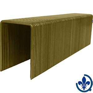 Agrafes-à-couronne-large-électro-galvanisée-type-Bostitch-1-1-4-1X10000-AGRAFES_COURONNE_LARGE_CAL16