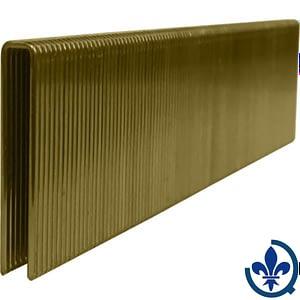 Agrafes-à-couronne-étroite-électro-galvanisées-1-3-16-10X5000-AGRAFES_COURONNE_ETROITE_CAL18
